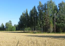 kyläniemi_utula2